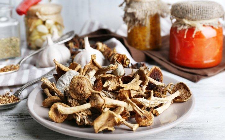 купить псилоцибиновый гриб москва