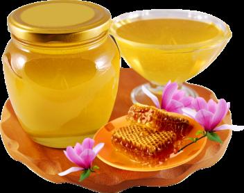 мед оптом