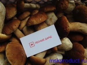 свежие белые грибы оптом
