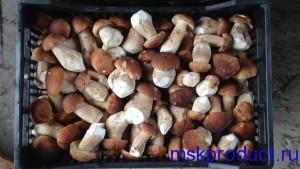 свежие белые грибы с доставкой